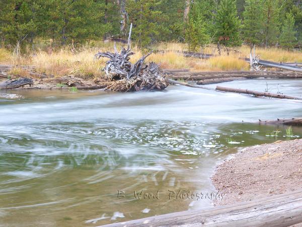 Gibbon River, Yellowstone National Park