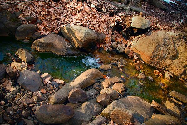 The Brook at the Churchill Road Nature Center, Tenafly NJ