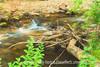 Rapids in the Stream, Snowblind Campground, Colorado