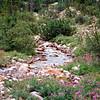 Mountain stream near Jasper, AB.