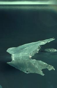 Little iceberg reflection. Scan from a 1994 slide