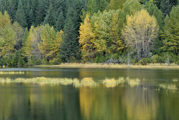 Autumn colors are just beginning to take hold around this small pond just south of Anchorage, Alaska. This photo was taken around mid-September.