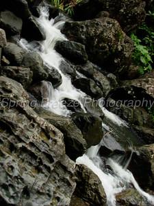 El Yunque Puerto Rico July 2008