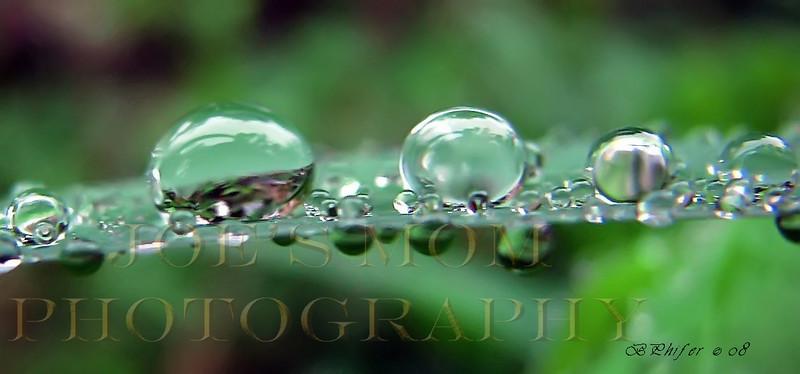 IN THE RAIN....