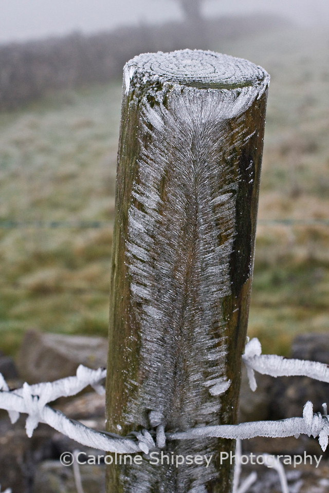 Ice on Fence Post 2