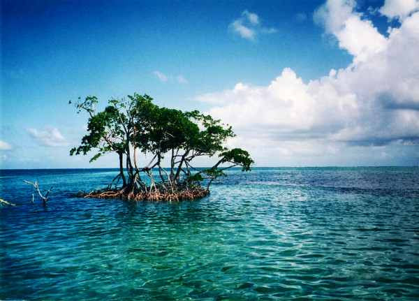 Caye Caulker, Belize 1997