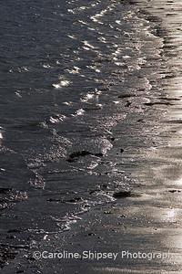 Sea Shore 1