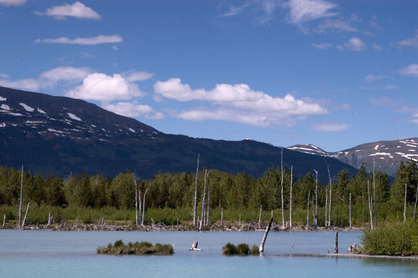 This pond is located near Portage Glacier just souith of Anchorage, Alaska.