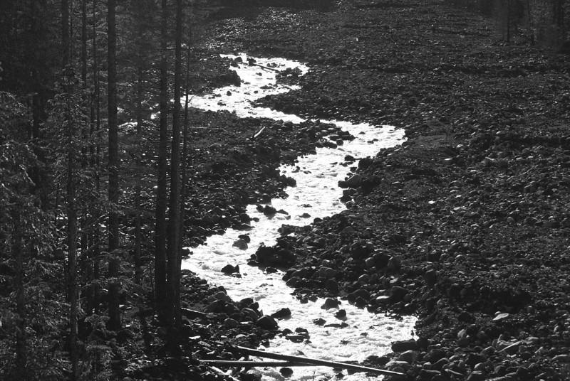 Mount Rainier National Park, WA, USA<br /> Nov 1, 2009