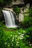 Waterfall Trip Spring 2013-008