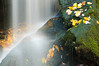 Upper Dill Falls-026