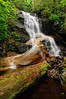 Log Hollow Falls-05