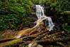 Log Hollow Falls-01