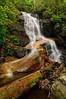 Log Hollow Falls-03