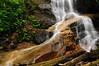 Log Hollow Falls-02