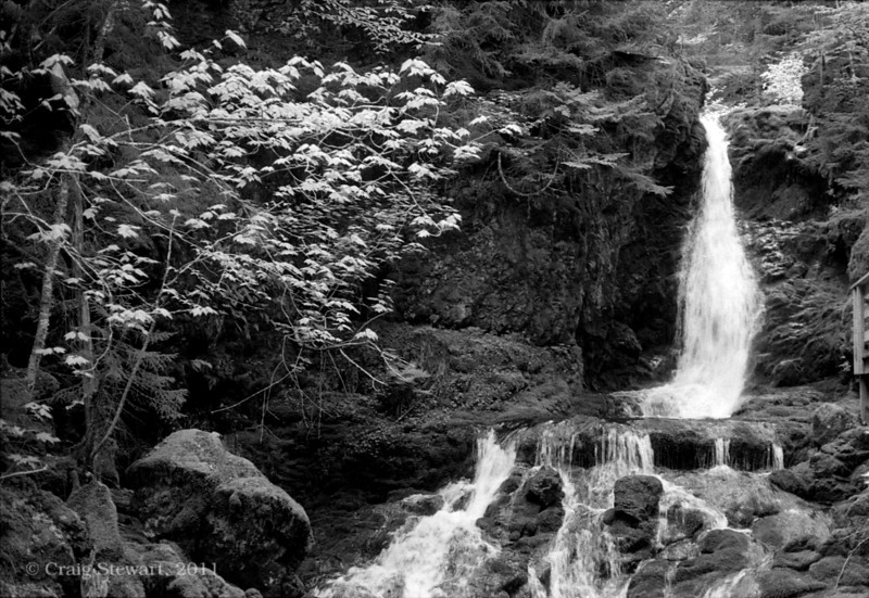 Dickson Falls, Fundy National Park<br /> Film - Arista EDU developed in Rodinol 1:50<br /> Red filter