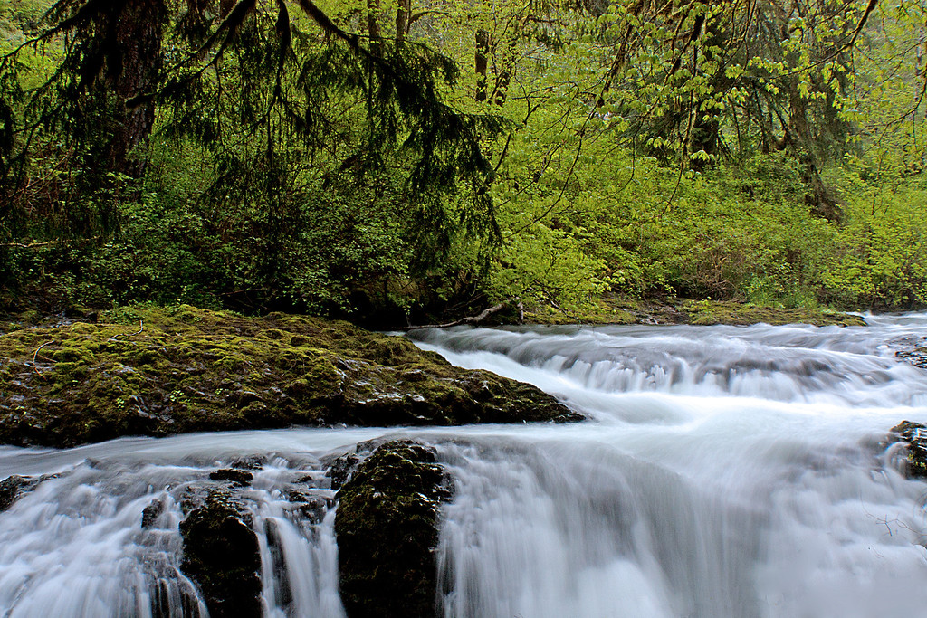 Upstream from North Falls, Silver Falls State Park, Oregon