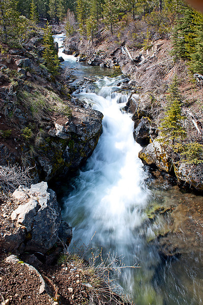 Upstream from Tumalo Falls, Oregon