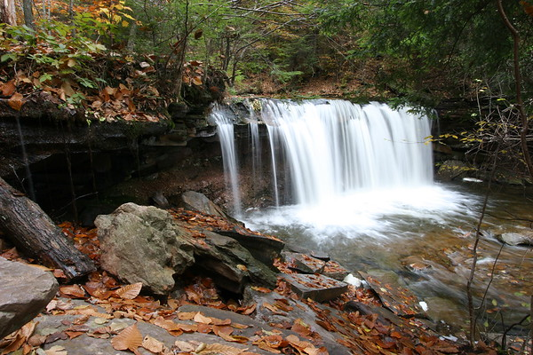 Rickett's Glen State Park