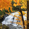 """ Autumn Rewards at Bond Falls """