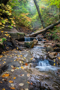 Wagner Falls Tributary