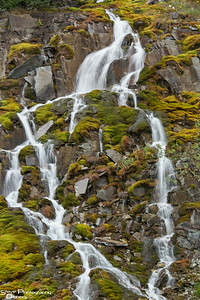 Mossy Rocks waterfall in the rain