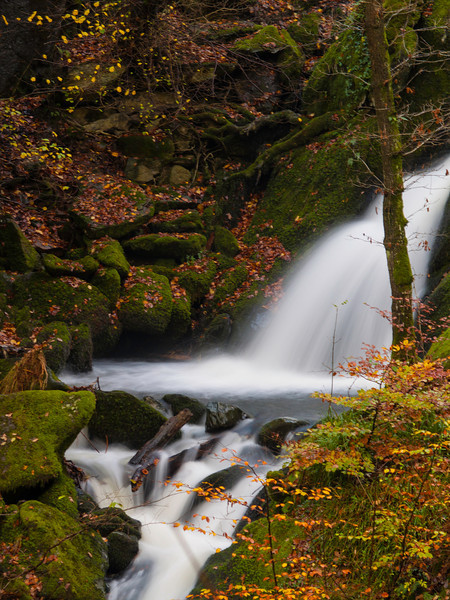 Atumnal Lower Stock Ghyll