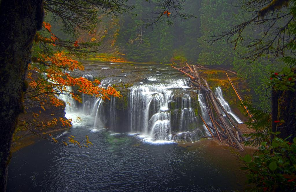 "Lower Lewis River Falls<br /> Gifford Pinchot National Forest<br /> Southwest Washington <a href=""http://www.waterfallsnorthwest.com/nws/falls.php?num=5290"">http://www.waterfallsnorthwest.com/nws/falls.php?num=5290</a>  -  <a href=""http://goo.gl/maps/gJVvm"">http://goo.gl/maps/gJVvm</a>"