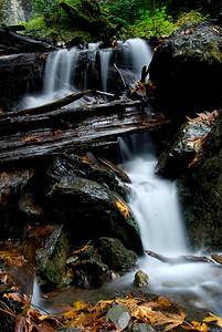 Bridal Falls with Fall leafs, B.C. Canada