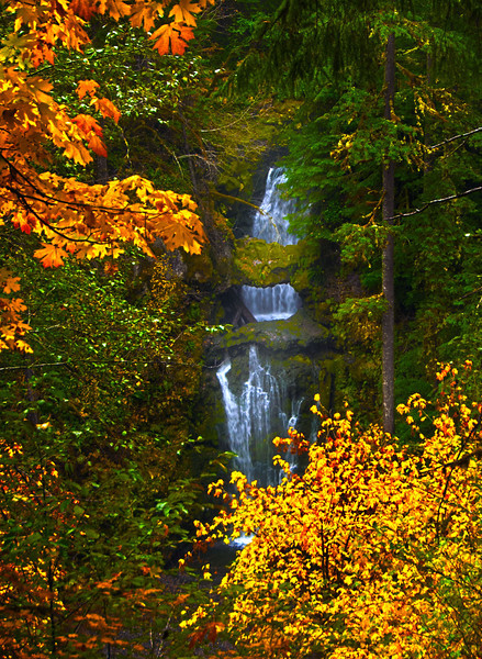 "Curley Creek Falls<br /> Gifford Pinchot National Forest<br /> Southwest Washington <a href=""http://www.waterfallsnorthwest.com/nws/falls.php?num=5276"">http://www.waterfallsnorthwest.com/nws/falls.php?num=5276</a>  -  <br /> <a href=""http://goo.gl/maps/E8uEH"">http://goo.gl/maps/E8uEH</a>"