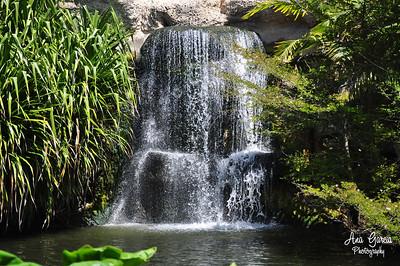 Waterfall at Jungle Island