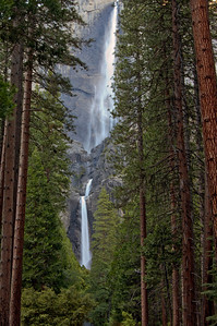 Yosemite Falls in Yosemite National Park.