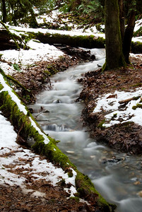 lower creek at Bridal Falls in the Snow, B.C. Canada