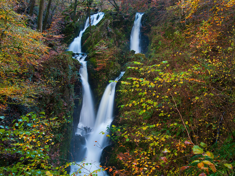 "<font color=""#e9efb7"">Autumnal Stock Ghyll"