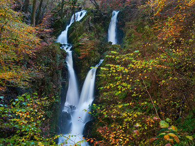 Autumnal Stock Ghyll