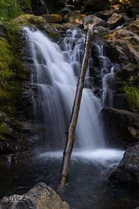 Fish Hawk Falls