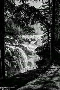 Sunwapta Falls in black and white