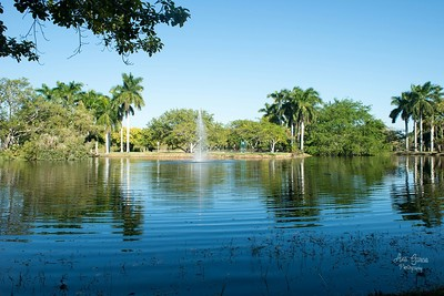 Peaceful Water with a Water Fountain at Crandon Park