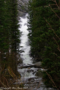 What was supposed to be an short, easy hike to Hidden Falls turned into a messy affair.  Part of the trail was closed by the park rangers and there was a detour.   I think the detour was further than the rest of the entire trail.  Before I could get to the falls, a freezing rain had started to fall.  Part of the trail was covered in snow, and the rest was extremely muddy & slippery.