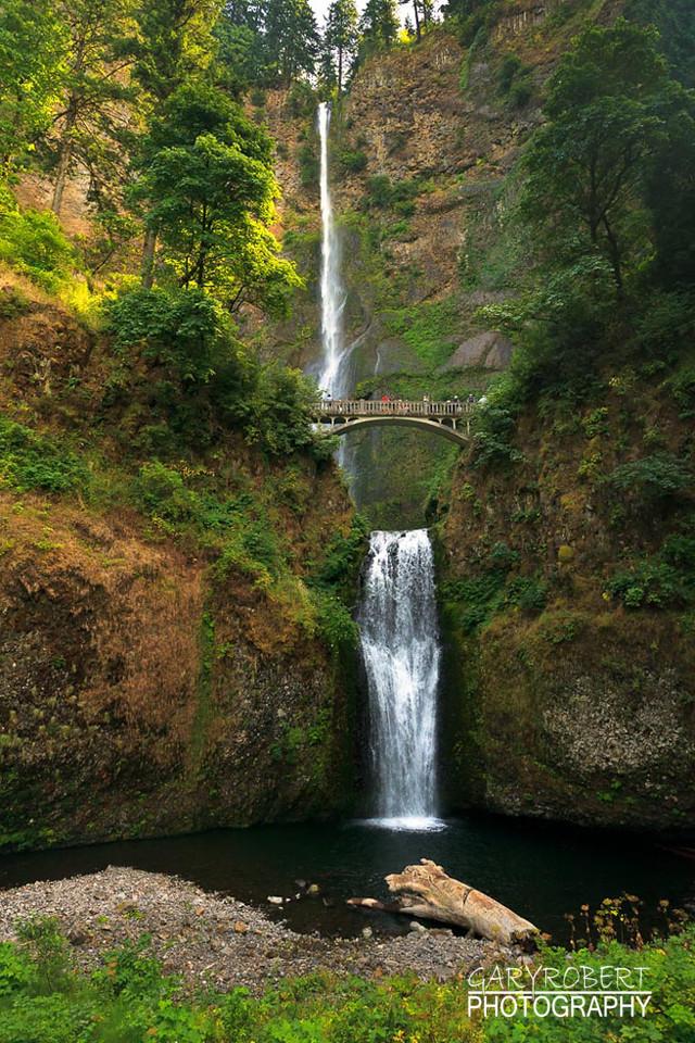 Oregon-2044