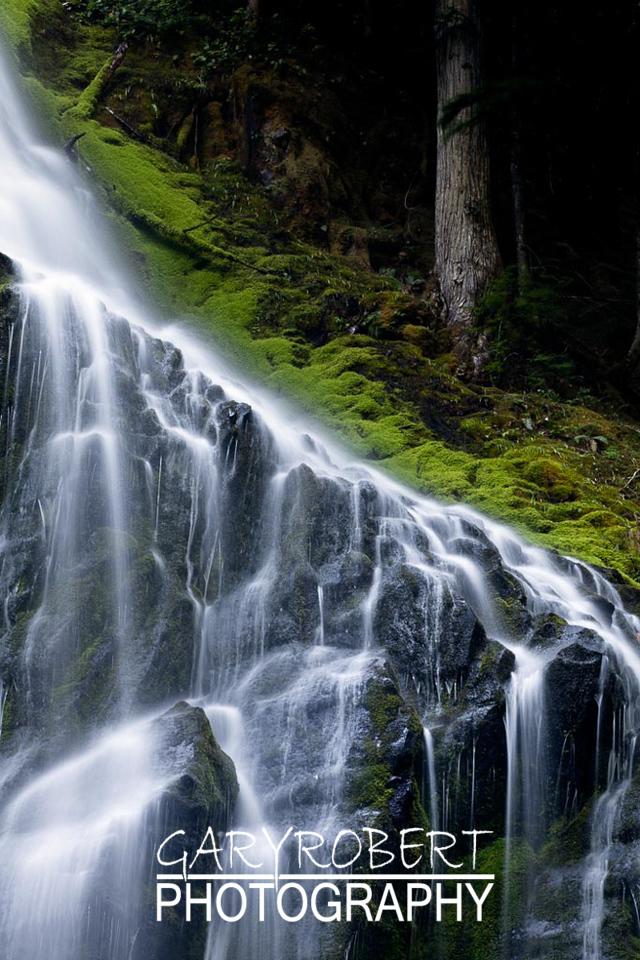 Oregon-2819