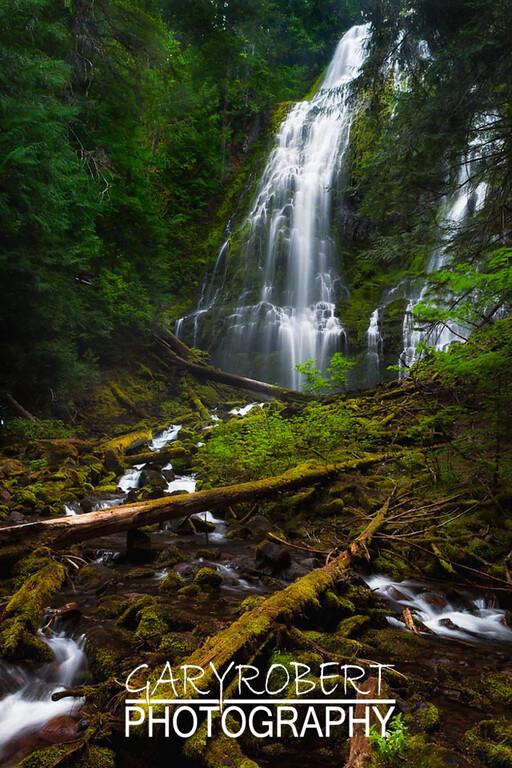 Oregon-2755