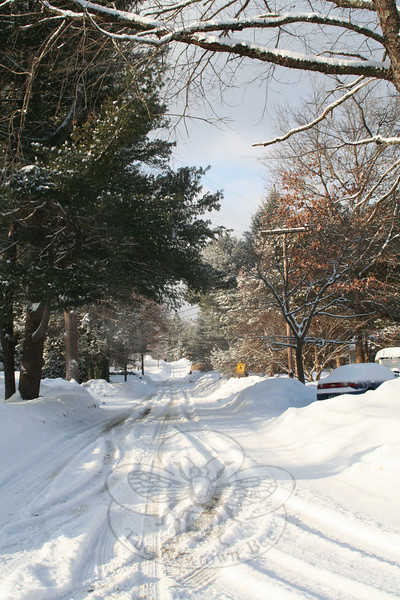 Maple Drive, as seen from Buttonball.  (Hicks photo)