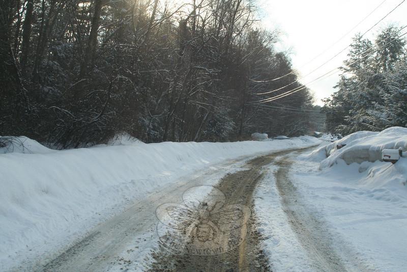 Buttonball Drive.  (Hicks photo)