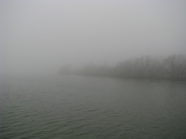 Fog draped over the lake and distant tree-lined shore