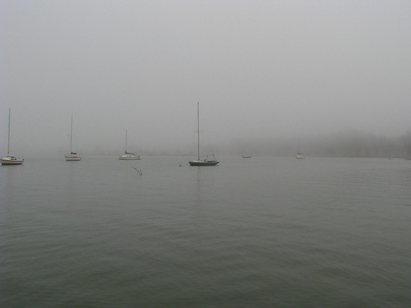 Distant sailboats moored on the fog-covered lake