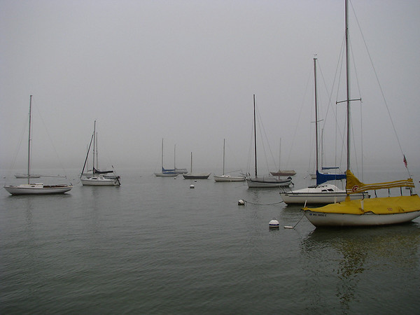 Nearby sailboats moored on the fog-covered lake