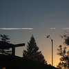 Condensation trail behind anemometer at dawn