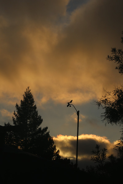 Fiery fog bank behind anemometer