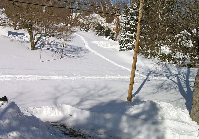 Two people on snowshoes were the only ones to come down the street.